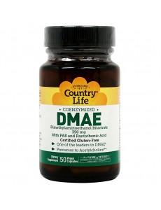코엔자임 DMAE 350 mg 50 야채캡슐