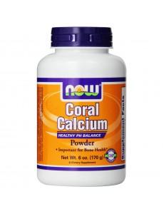 산호 칼슘 파우더, 170g