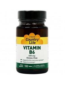 비타민 B6 100 mg 100 타블렛