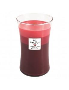 트릴로지 캔들 썸머 후르츠 625 g
