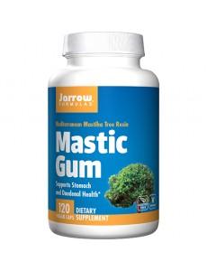 자로우포뮬러스 매스틱검 1000 mg 120 야채캡슐