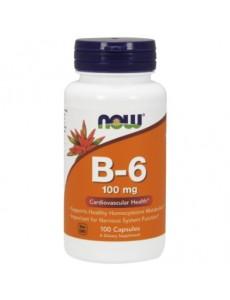 비타민 B-6 100 mg 250 캡슐