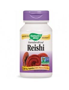 레이쉬 (영지버섯) 추출물 100 야채캡슐