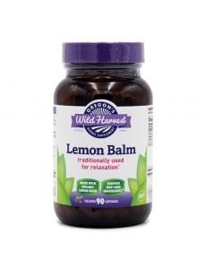 레몬밤 90 베지캡슐